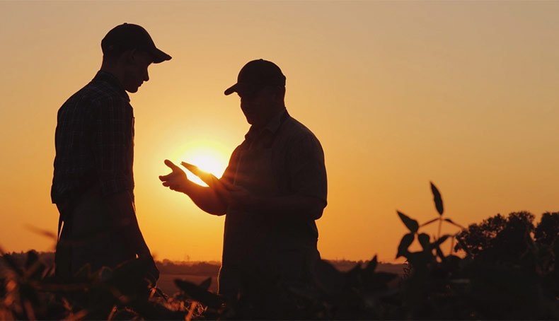 A Crop Insurance Agent's 6 Favorite Quotes About Farmers and Money